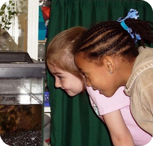Girls fish tank elementary.jpg