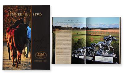sappi-africa-2010-brochures-bronze.jpg