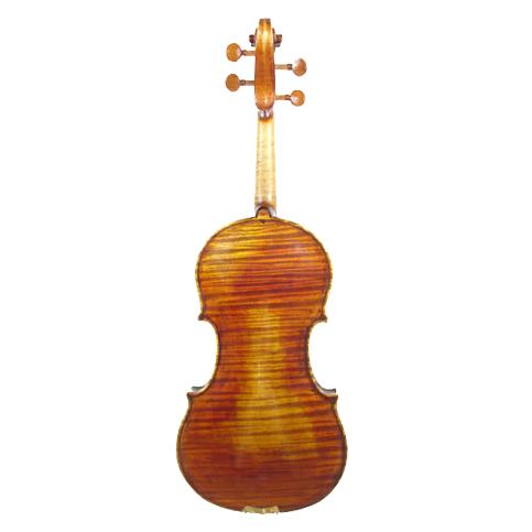 AS_Violin_CA800AT_Back.PNG