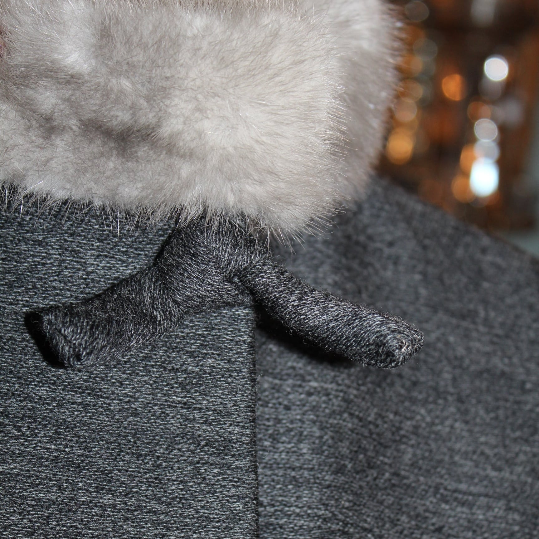 Detail: Fur Trim and Tie