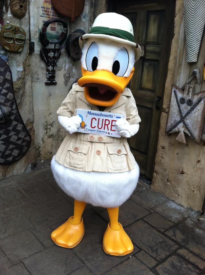 CCC Donald Duck.jpg