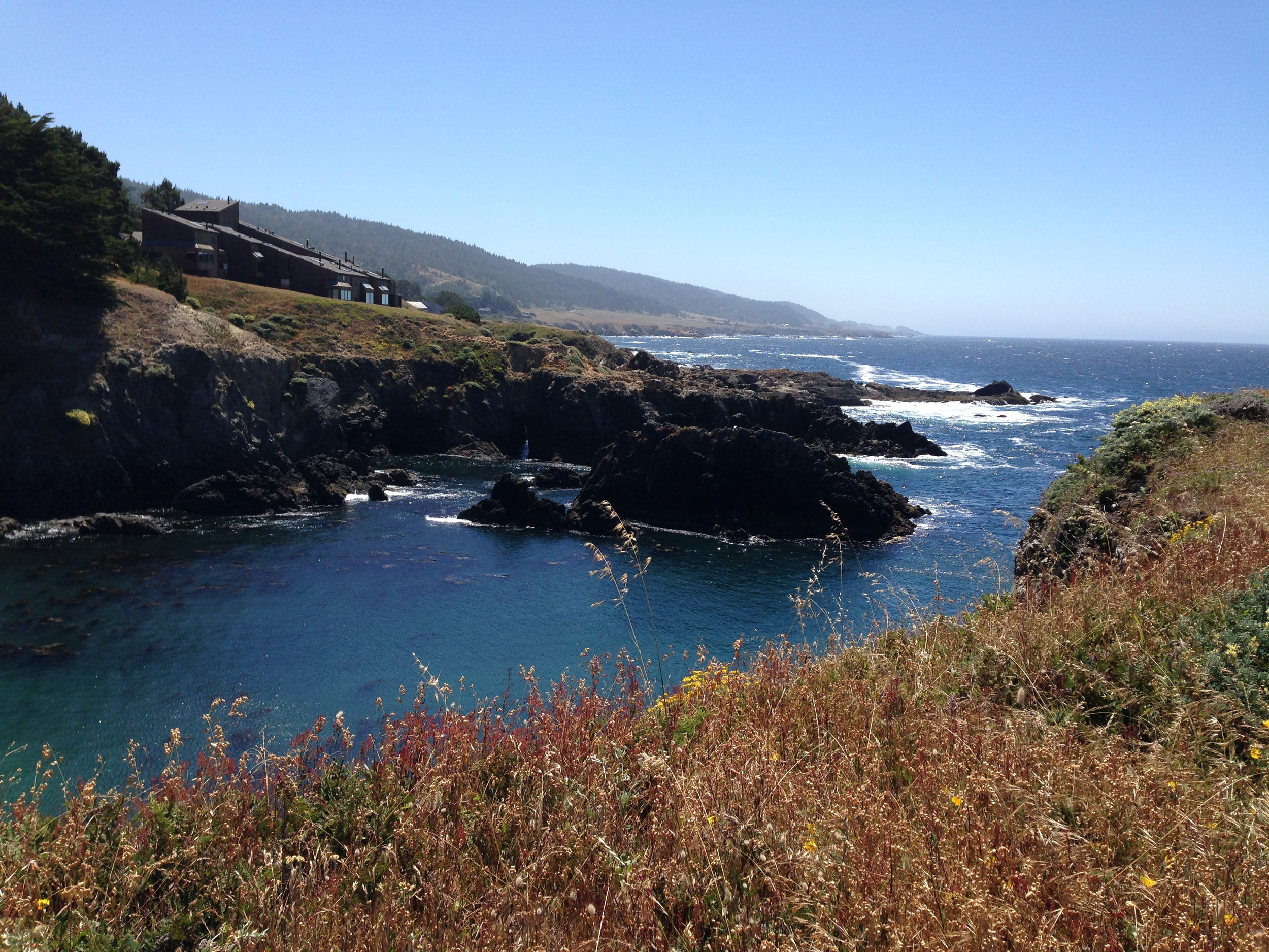 Near the Sea Ranch Lodge