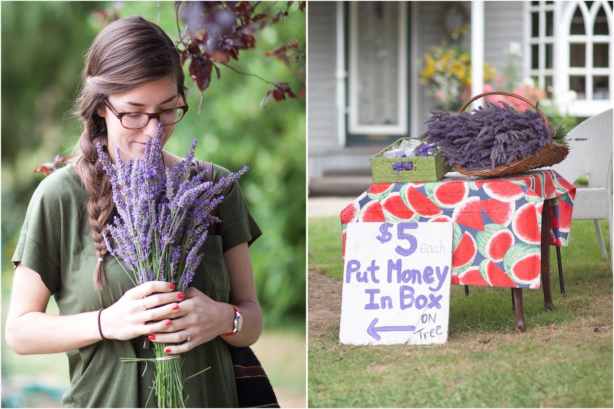 lavender-honeymoon-portrait.jpg