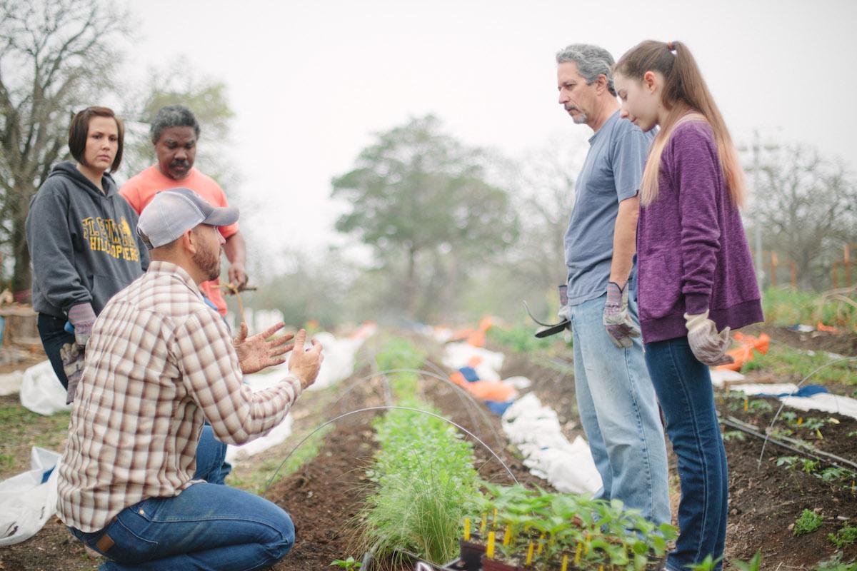 urban_farm_genesis_gardens_ministry_austin-2.jpg