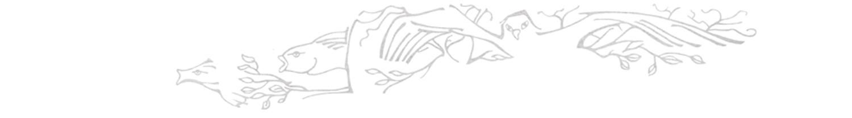 gray-bird-fish-Stamp_hz.jpg