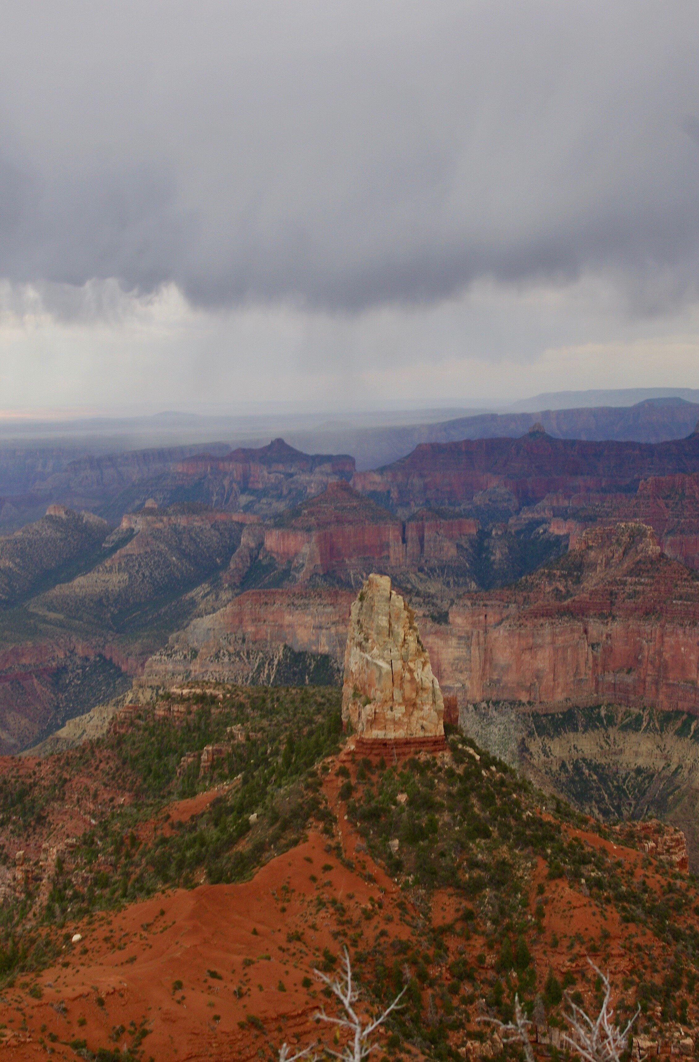 THIS is the North Rim, and you can see what the weather was like. I didn't reach the rim until late afternoon, and fortunately it was not raining in the place where I was standing.