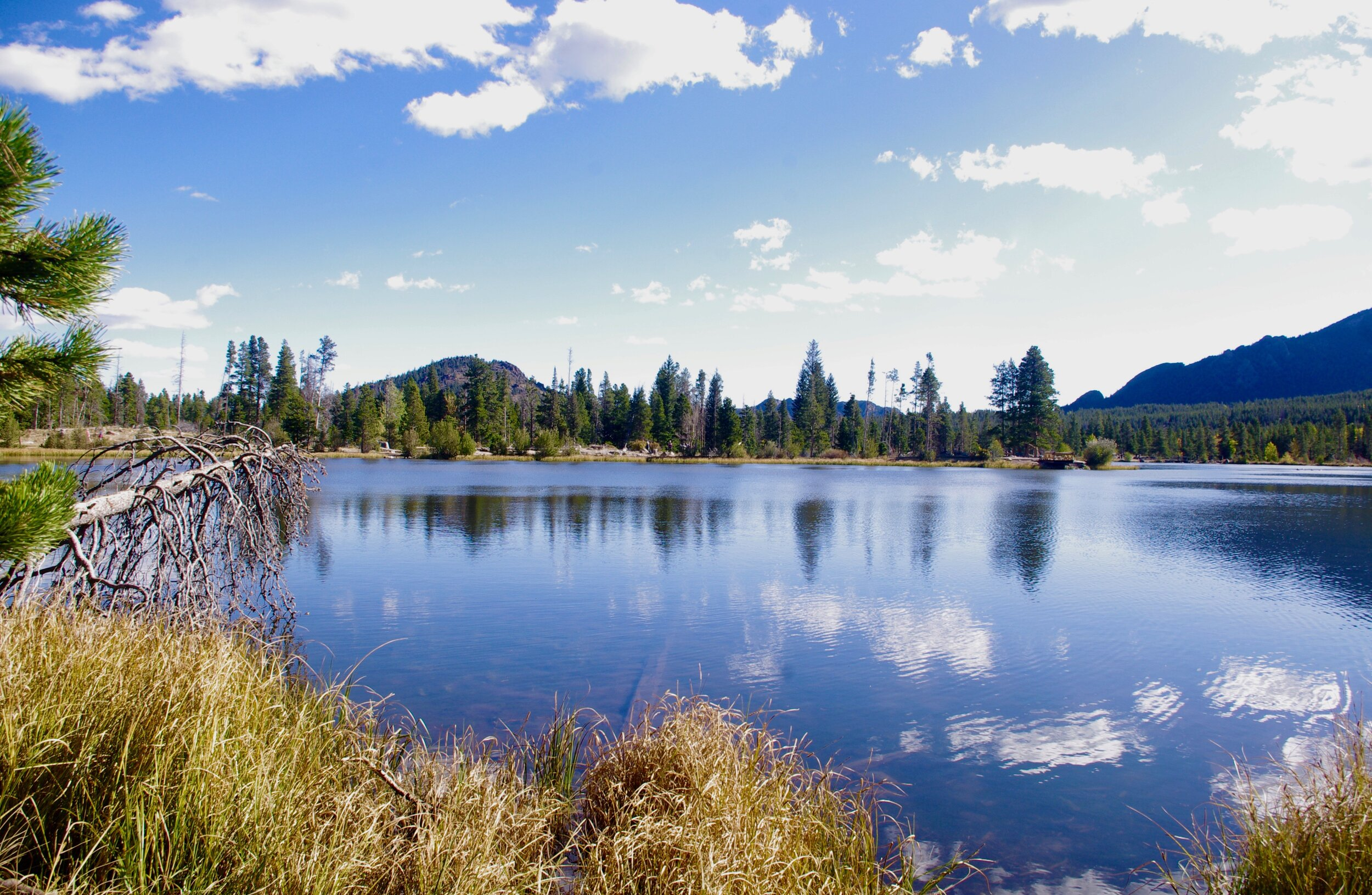 On the way to Bear Lake, I stopped at Sprague Lake, a gentle walk and some gorgeous scenery