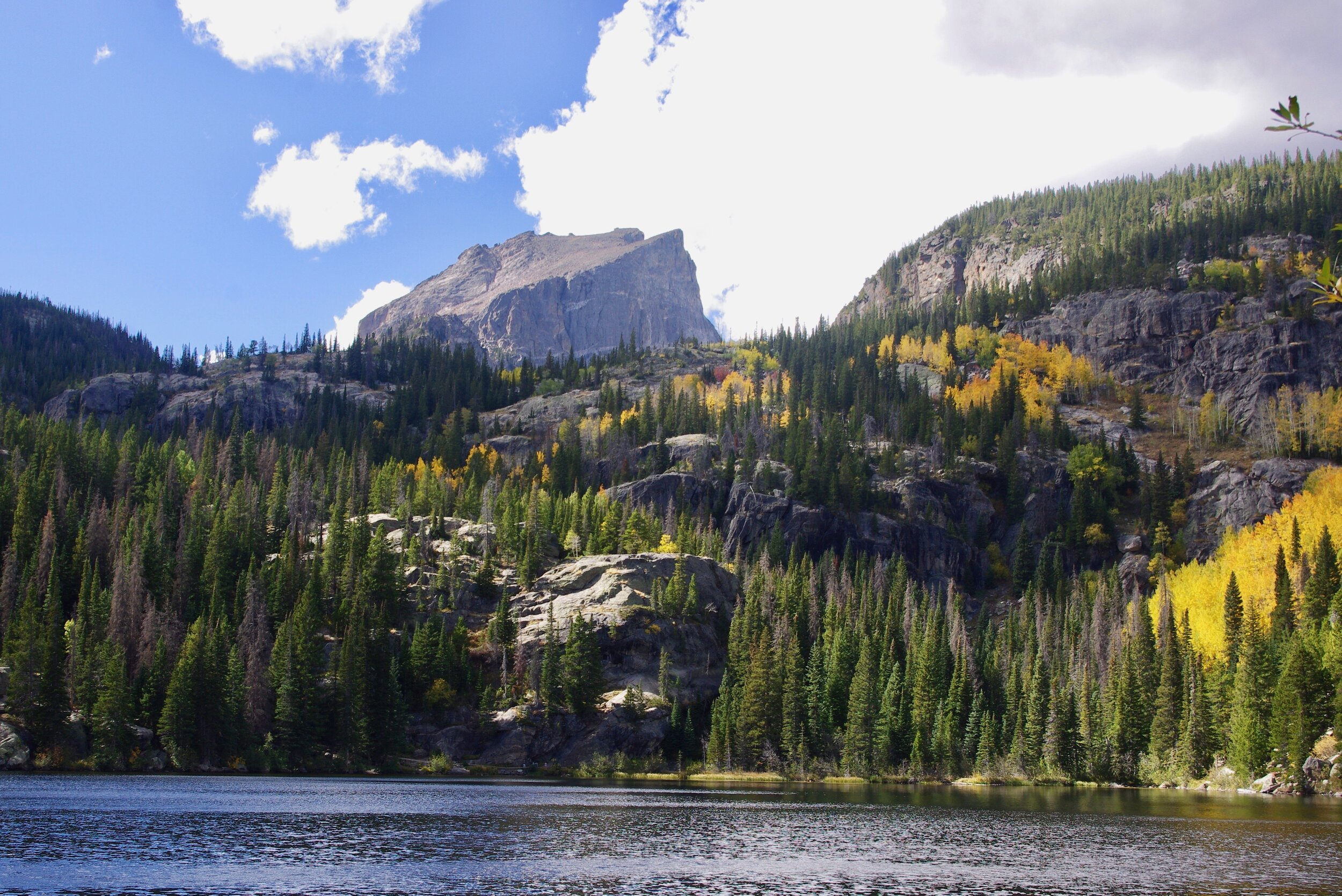 Aspens in the sun, Bear Lake