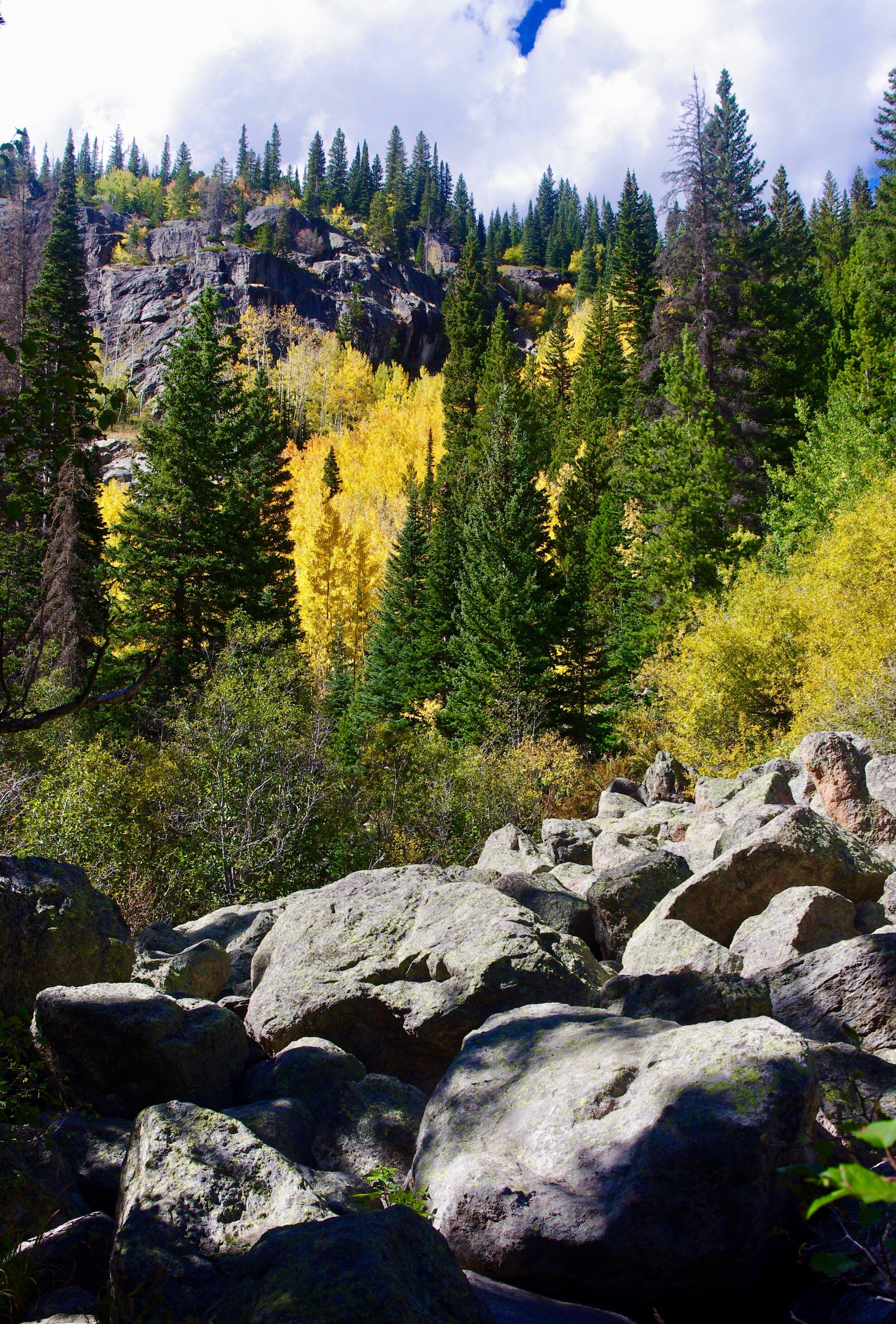 Rocks and aspens, Bear Lake