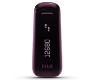 The Fitbit One