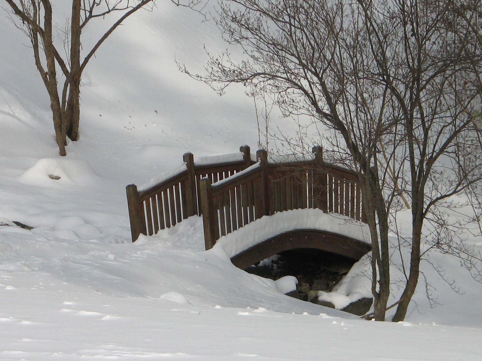 kirpalu winter 09 028.jpg