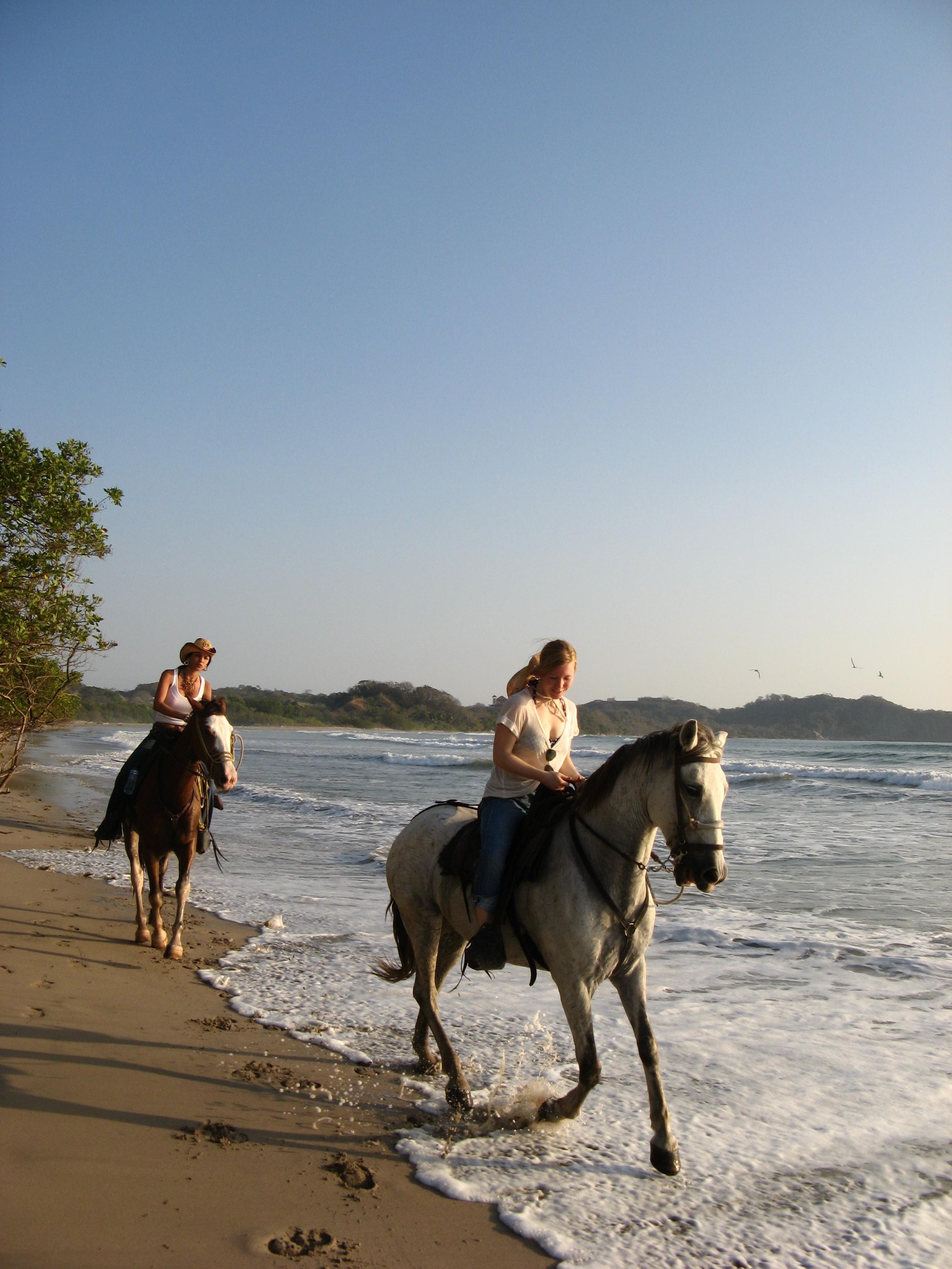 horse back riders.jpg