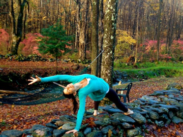 image_360x270_YogaDorkLessons.png