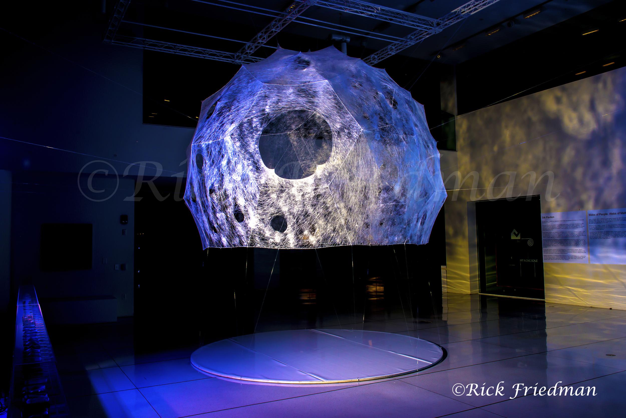 Silk Pavilion006.jpg