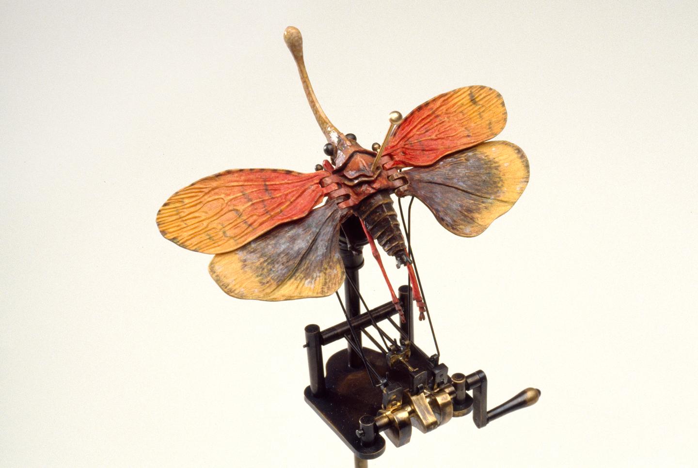 DBeck_MothcaiqueIII_35mm_5_web.jpg