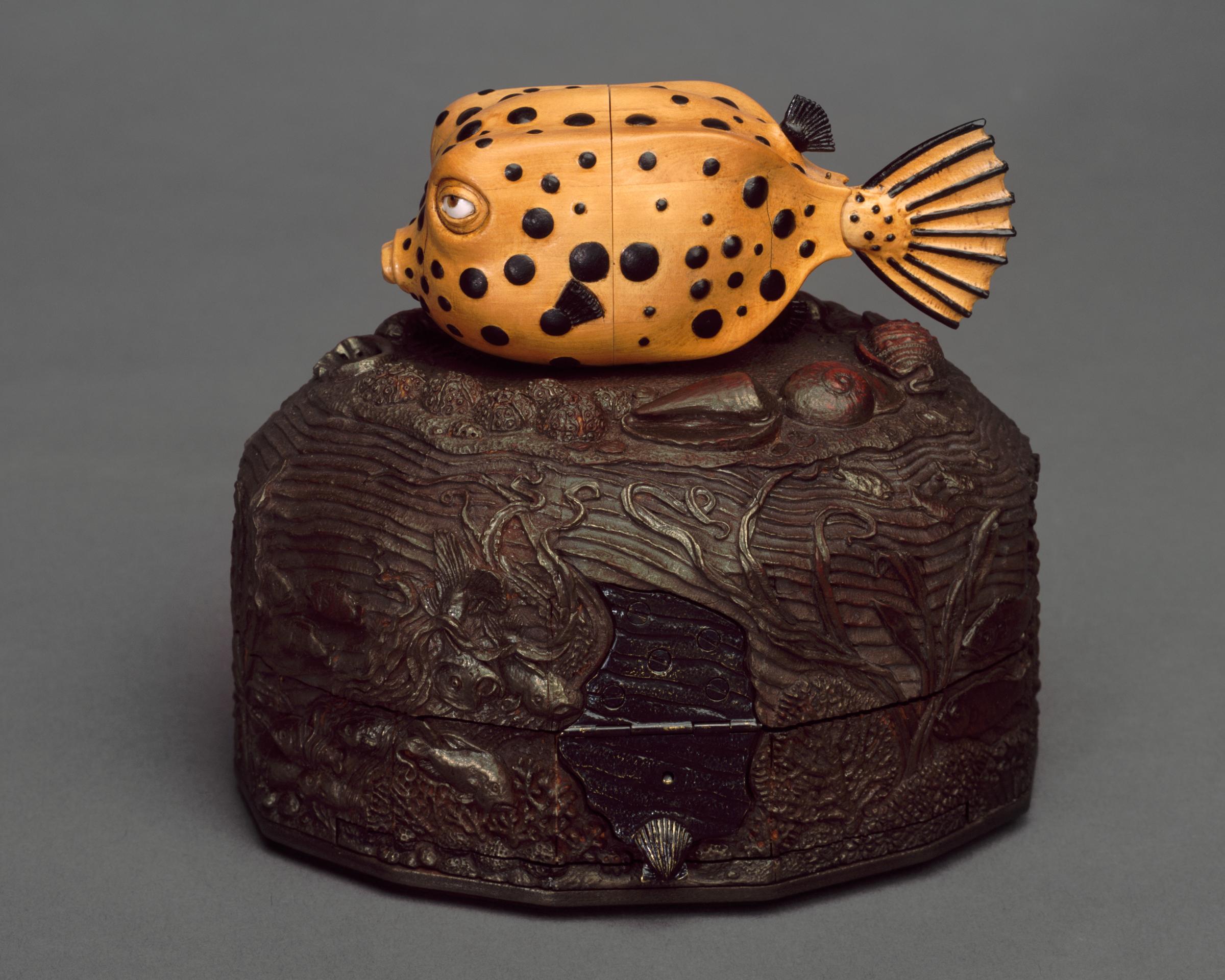 Box Fish Kabinet
