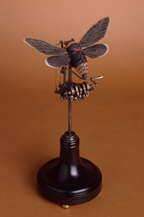 Mothcanique IV