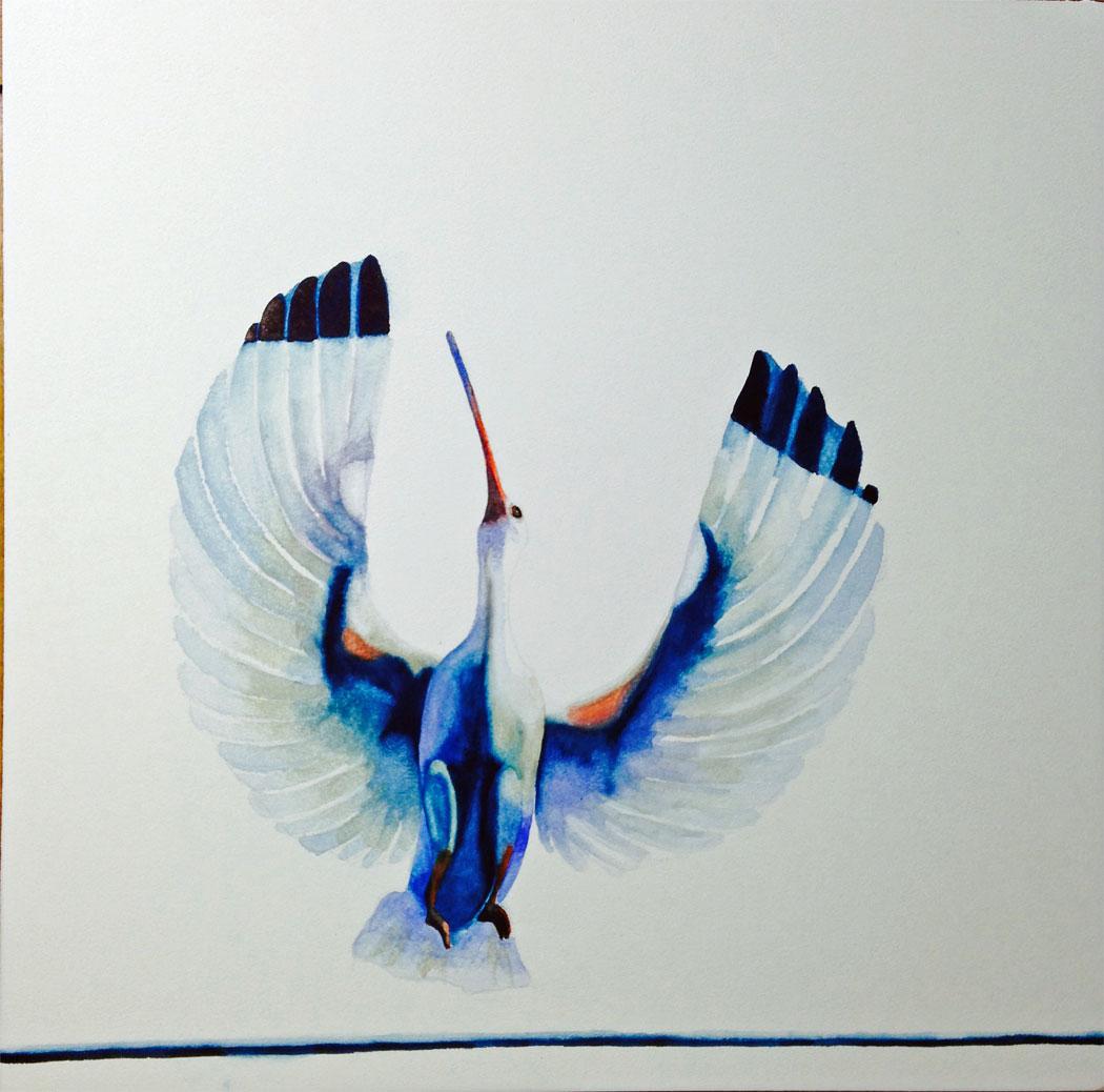 Bird-off-a-wire.jpg