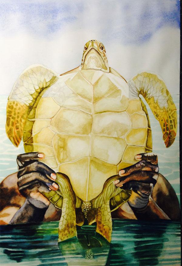 Hiding-behind-turtles-3.jpg
