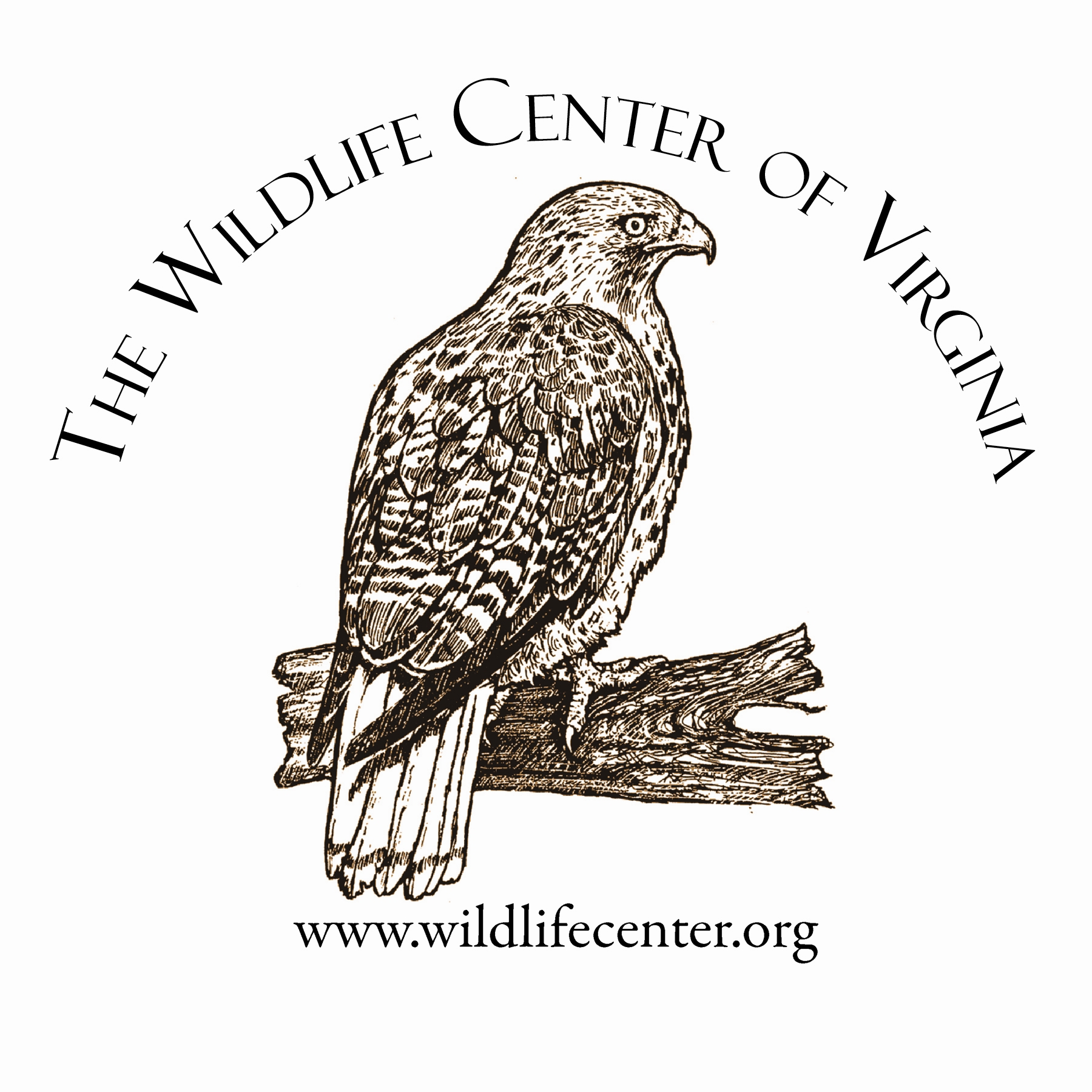 Where I learn what is possible in online communities. WCV is a hospital for native wildlife, teaching the world to care about and to care for wildlife and the environment.  www.wildlifecenter.org