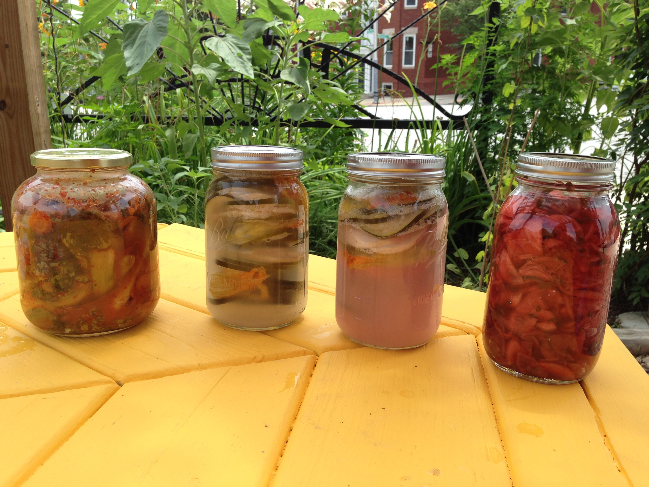 (left to right) Kimchi, Zucchini Turnip Pickle x 2, Turnip Radish Pickle