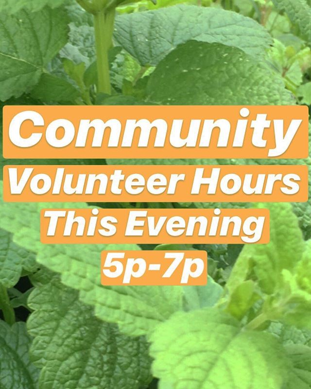 Peace Farm Family! Please join us this evening & every Wednesday 5-7pm for our community volunteer hours! Next Week We'll also be having our first Wednesday Community Potluck of the season!! 😆😆 Looking forward to seeing you all! Peace ✌🏾