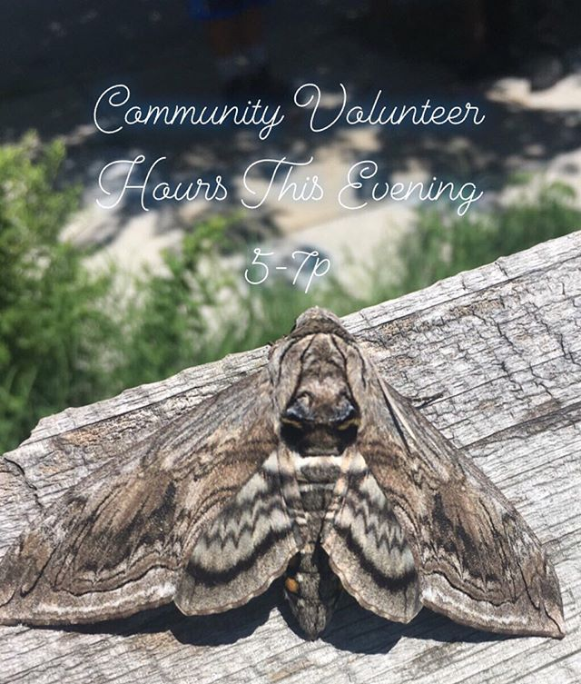 Peace, Family! Gentle Reminder. Our community volunteer hours for the week start this evening 5-7p & continue Saturday morning 10-12. Today's activities will include- Garlic Scape Harvest.  Light Woodchip Laying, Light Weeding Etc.
