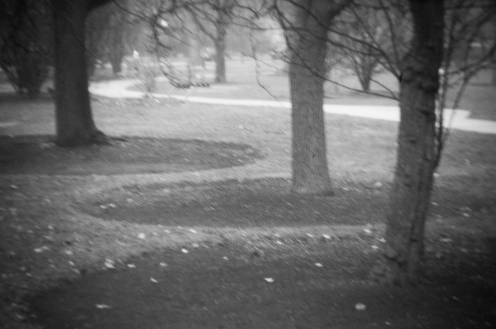 Near the Path
