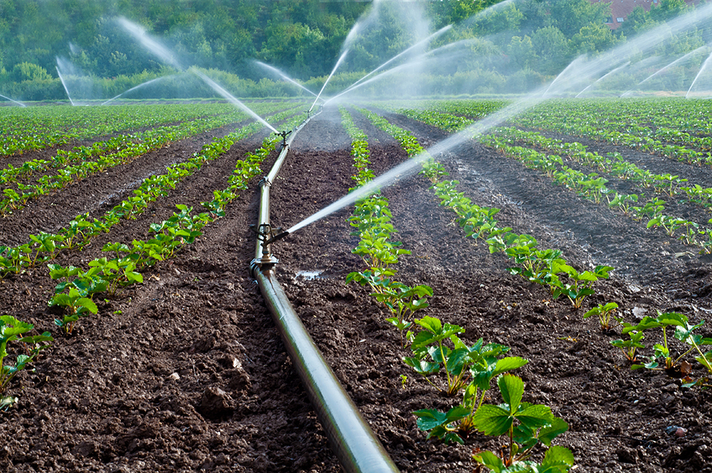 Irrigation Design and Control
