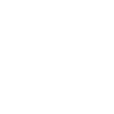 NEXT STEPS.png