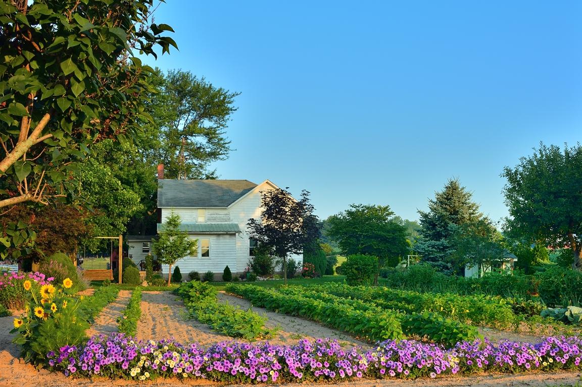 farmyardgarden2email.jpg