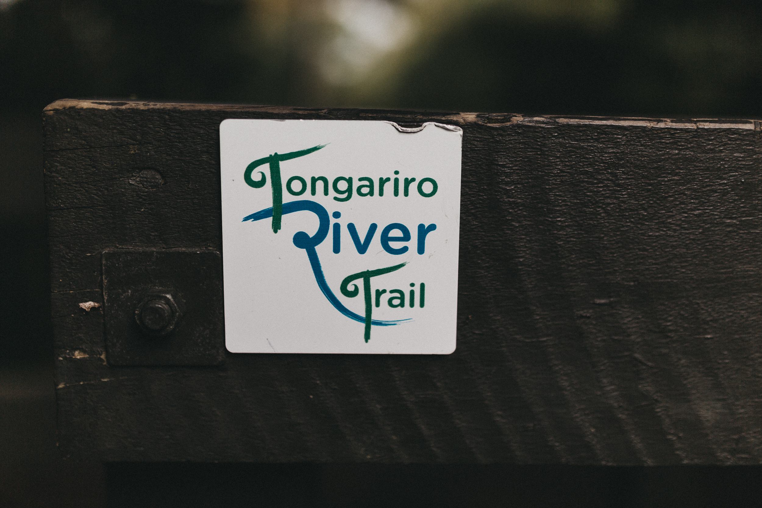 Day Two: the Tongariro River trail departing from Turangi, an easy walk along the river (10 min drive from Pukawa Bay).
