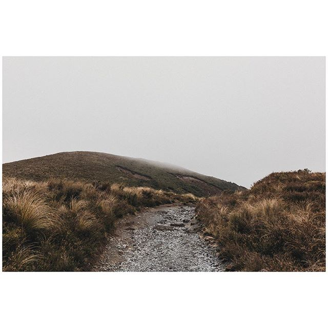 Walking into mist along the Tongariro Crossing track in New Zealand. For more photos of travels around the Tongariro National Park, I've finally gotten around to blogging it (link in bio)!🏔 . . . #melbournefolk #somewheremagazine #nature #tongarirocrossing #tongariro #hike #newzealand #newzealandnatural #trampingnz #exploretocreate #mountngauruhoe #travelgram #fog #mist #mistyfoggymilkymoody #subjectivelyobjective #tongariroadventures