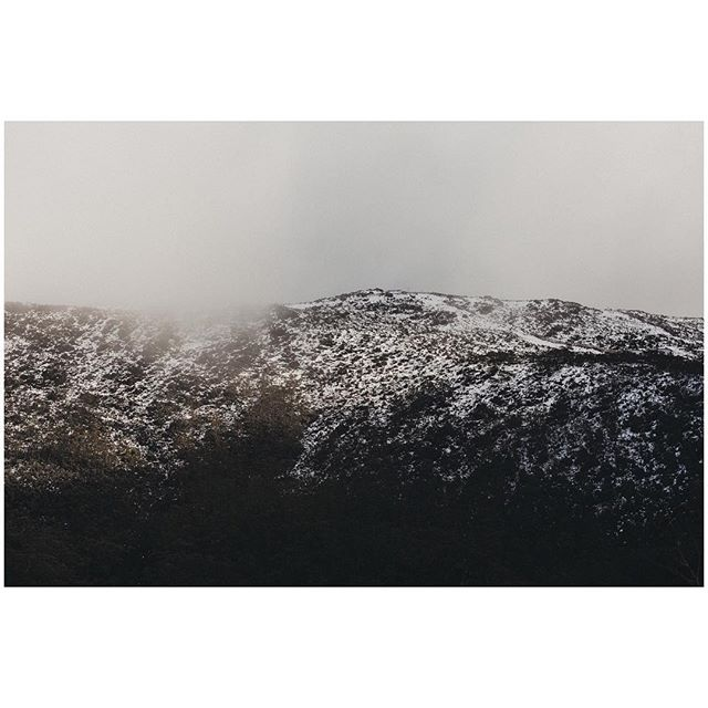 A little day-trip to the mountains during Dark Mofo in Tasmania. This is at Mount Field National Park, about an hour's drive from Hobart. The snow clouds descended just after we'd driven to the top, near Lake Dobson ❄️ . . . #darkmofo #tassiegram #discovertasmania #tassiegram #exploretocreate #mountfieldnationalpark #lakedobson #snow #mistyfoggymilkymoody #somewheremagazine #melbournefolk #melbournedocumentaryphotographer #melbourneweddingphotographer #subjectivelyobjective #paperjournalmag #nature