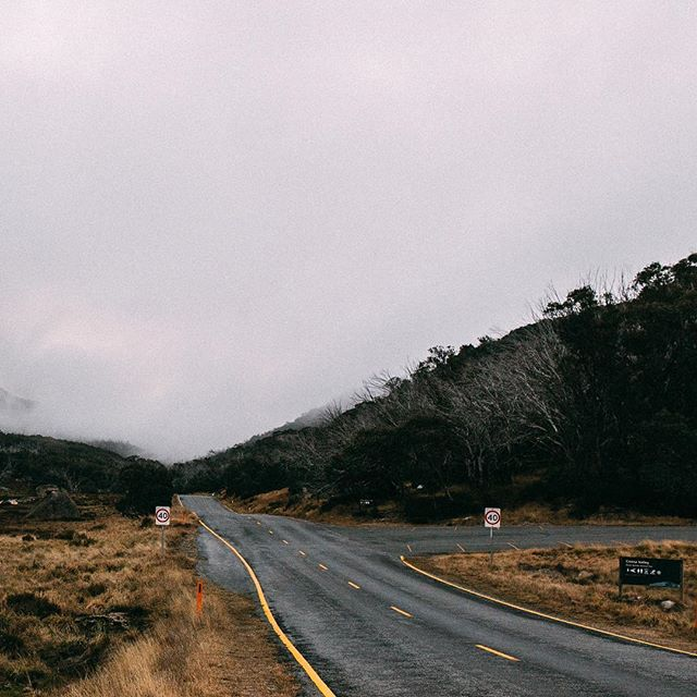 Road to Mount Buffalo, 2017 💨 . . . . . . . #35mm #mistyfoggymilkymoody #gameoftones #createcommune #exploreeverything #artofvisuals #bleachmyfilm #justgoshoot #keepitwild #kinfolkmagazine #liveauthentic #lookslikefilm #mountbuffalo #visitbright #visitvictoria #seeaustralia #passionpassport #paperjournalmag #subjectivelyobjective #nature #noicemag #exploretocreate #theadventurehandbook #theoutbound #thehorn #melbourneweddingphotography #nature #capturemagazine #mountainvibes #mountain #fog