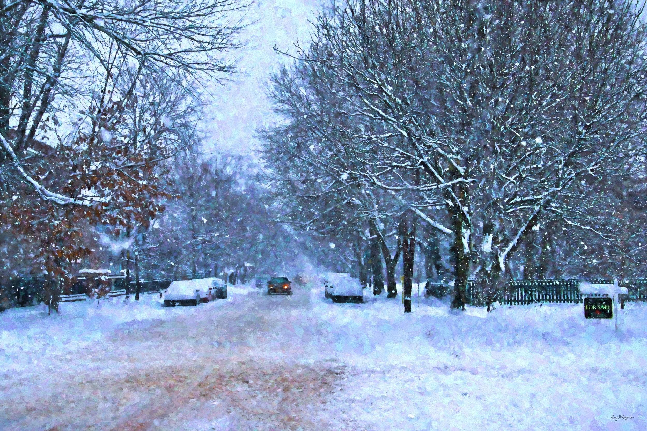 Snowy Central.jpg