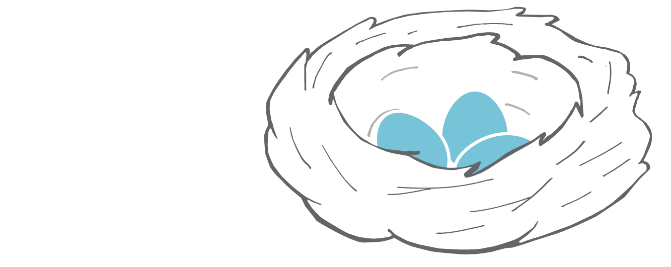 EGGS illustrations_nest.png