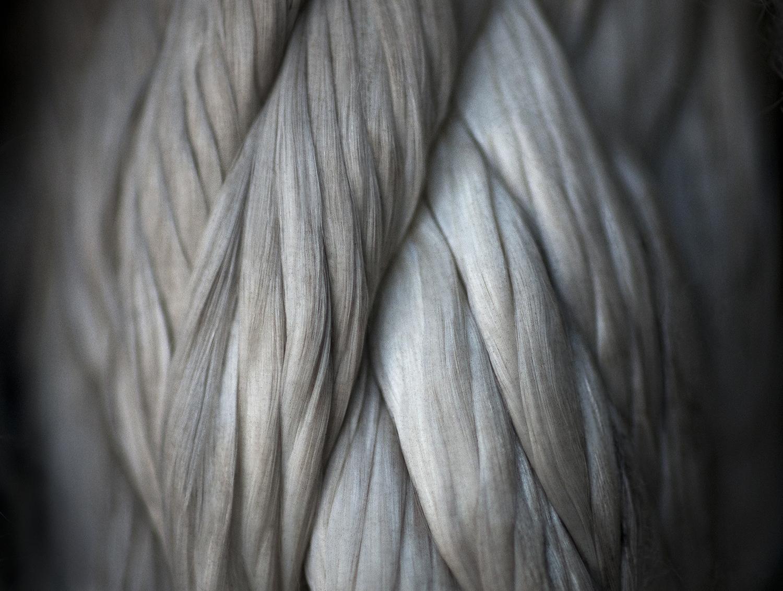 "Brawn, 2012    9.5"" x 12.5"" archival pigment print"