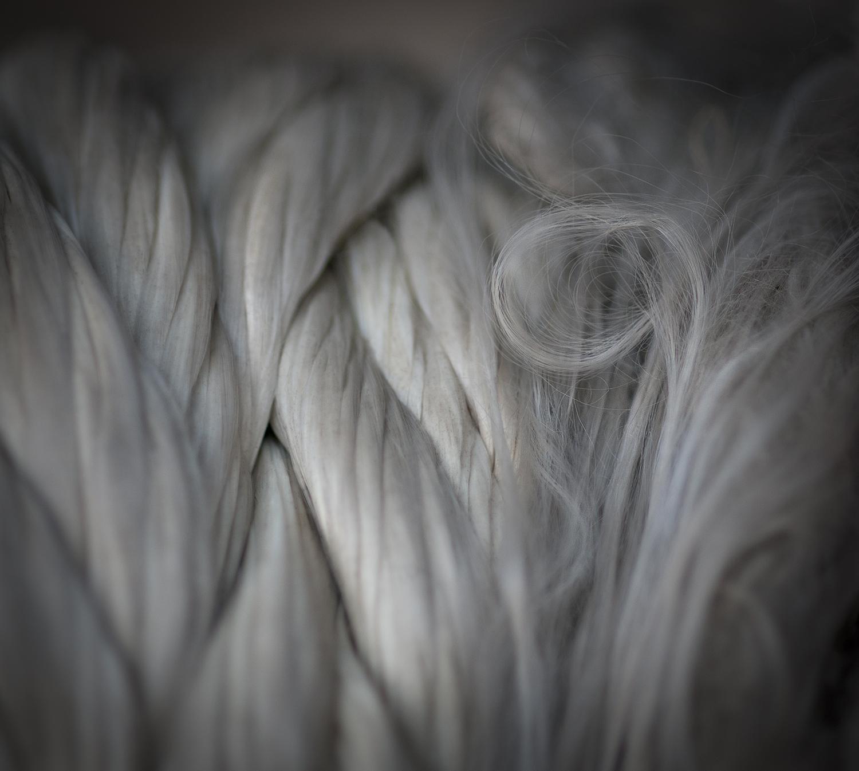 "Volute, 2012    9.5"" x 10.6"" archival pigment print"