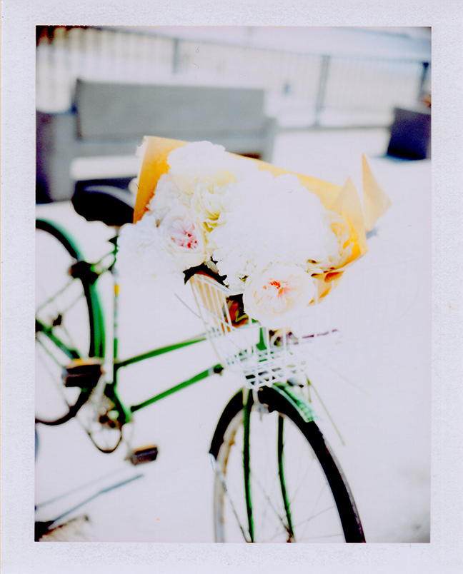 Polaroid-Bike-Flowers-2.jpg
