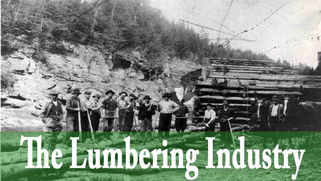 The Lumbering Industry.jpg