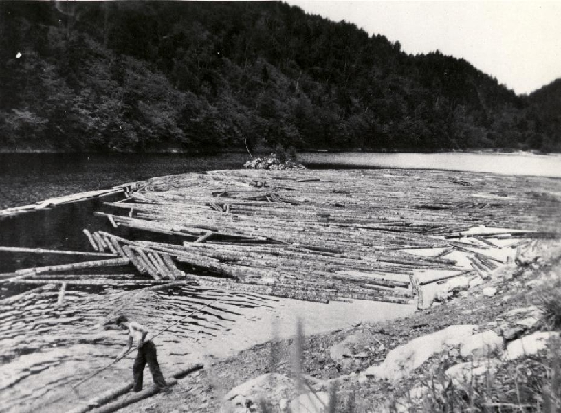 An unidentified man using a 'Pike Pole' to push logs in a log boom on the Alma river. 1915 Alma, New Brunswick, Canada