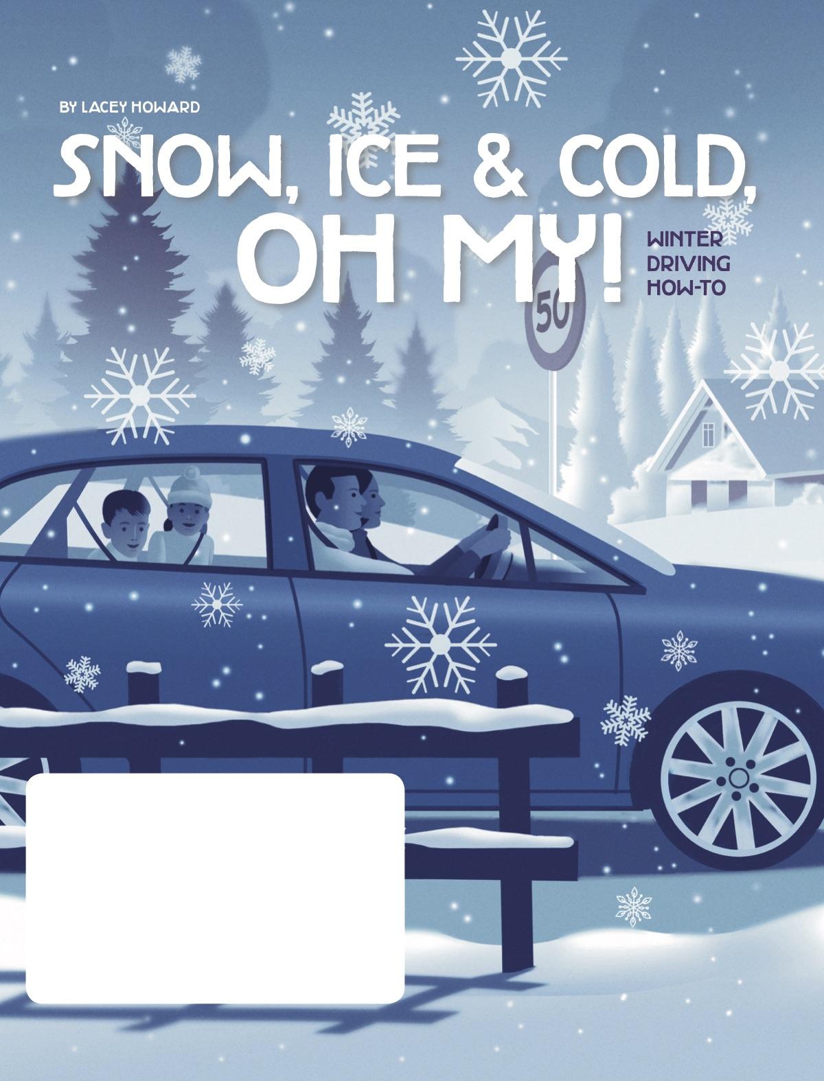 winter driving 1.jpg