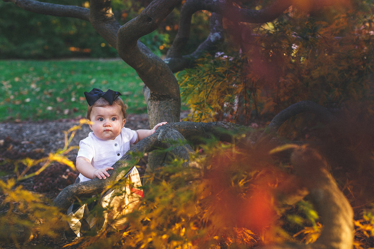Baby in the Tree