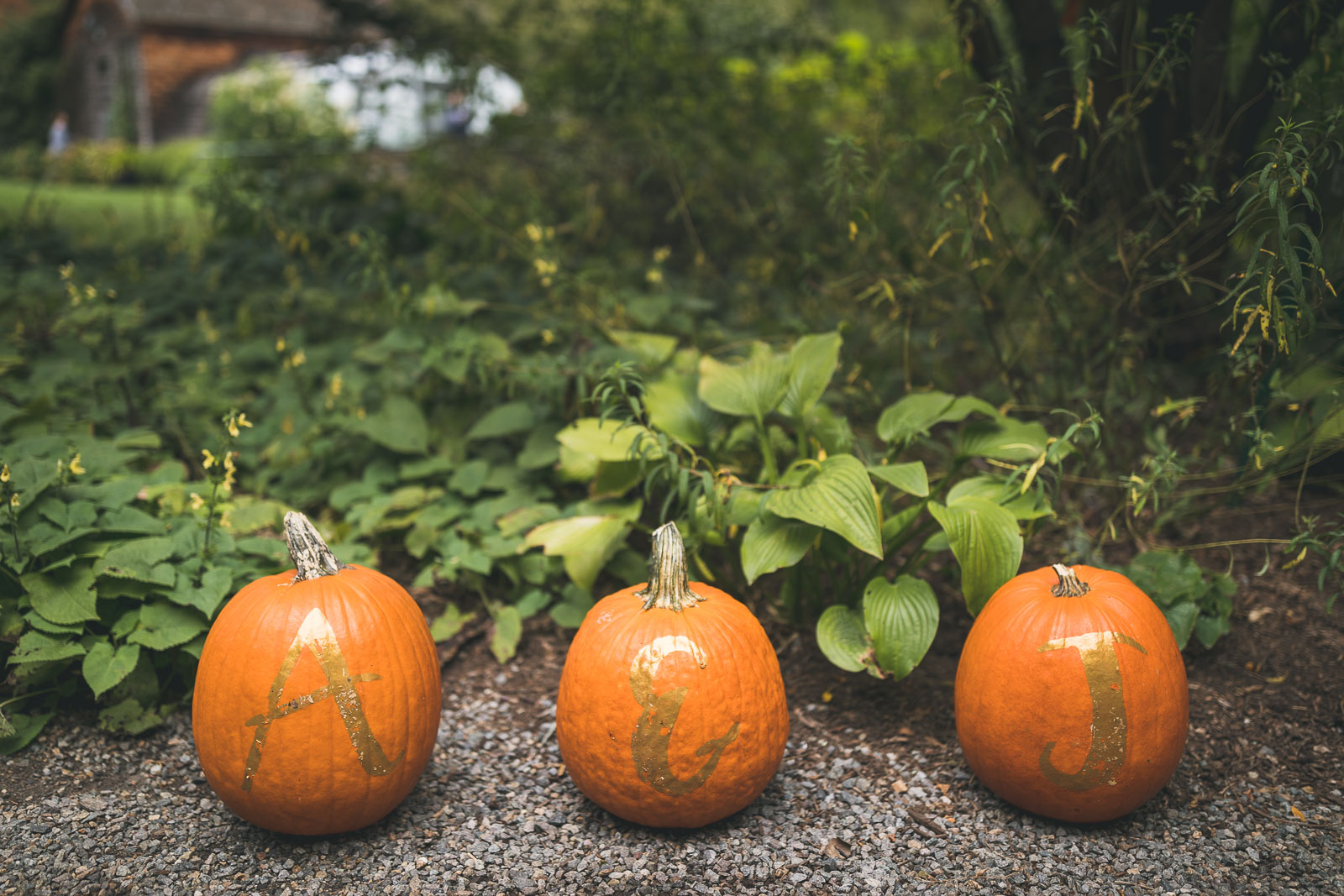 Pumpkin Wedding Details