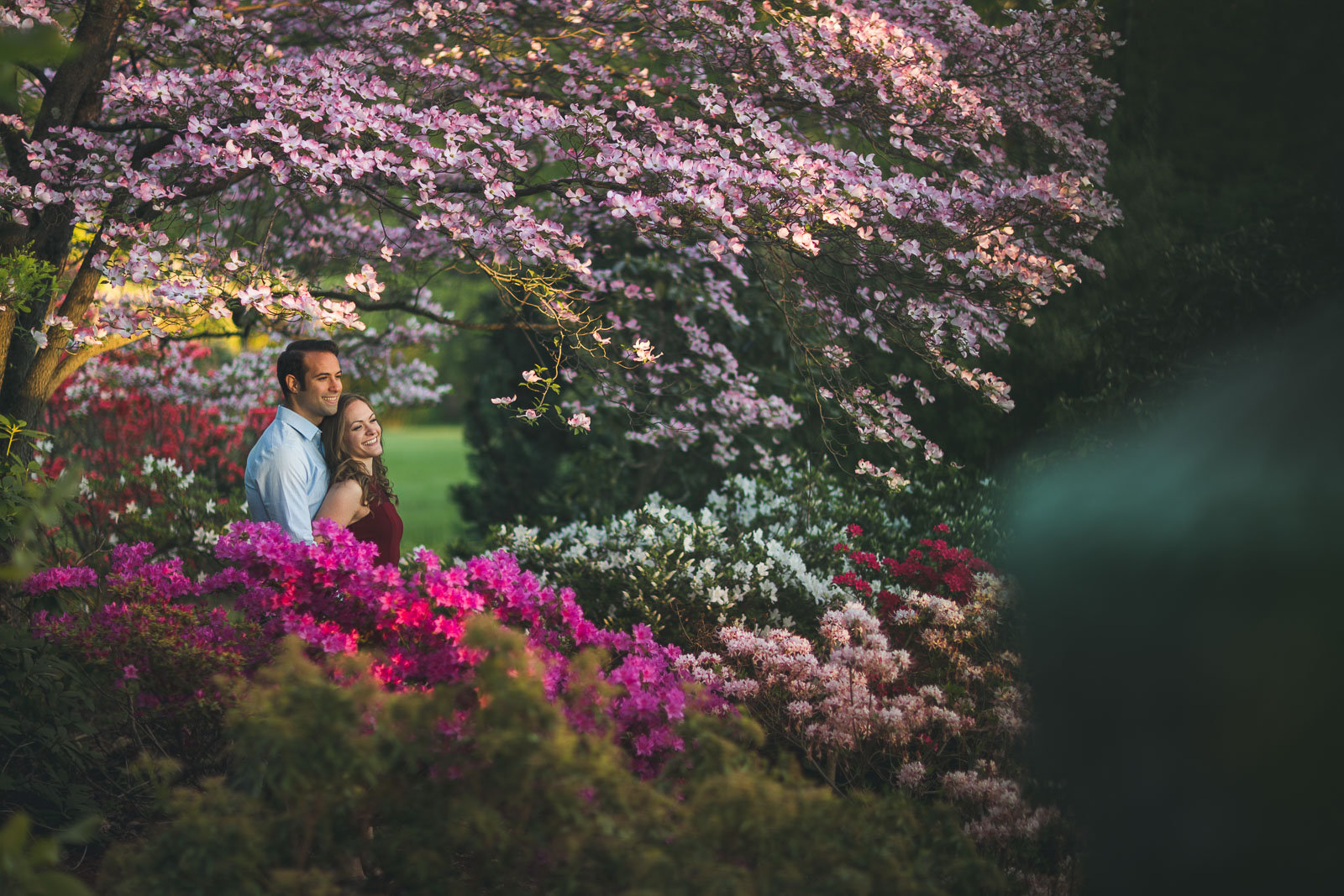 Garden Sunset Engagement Photo