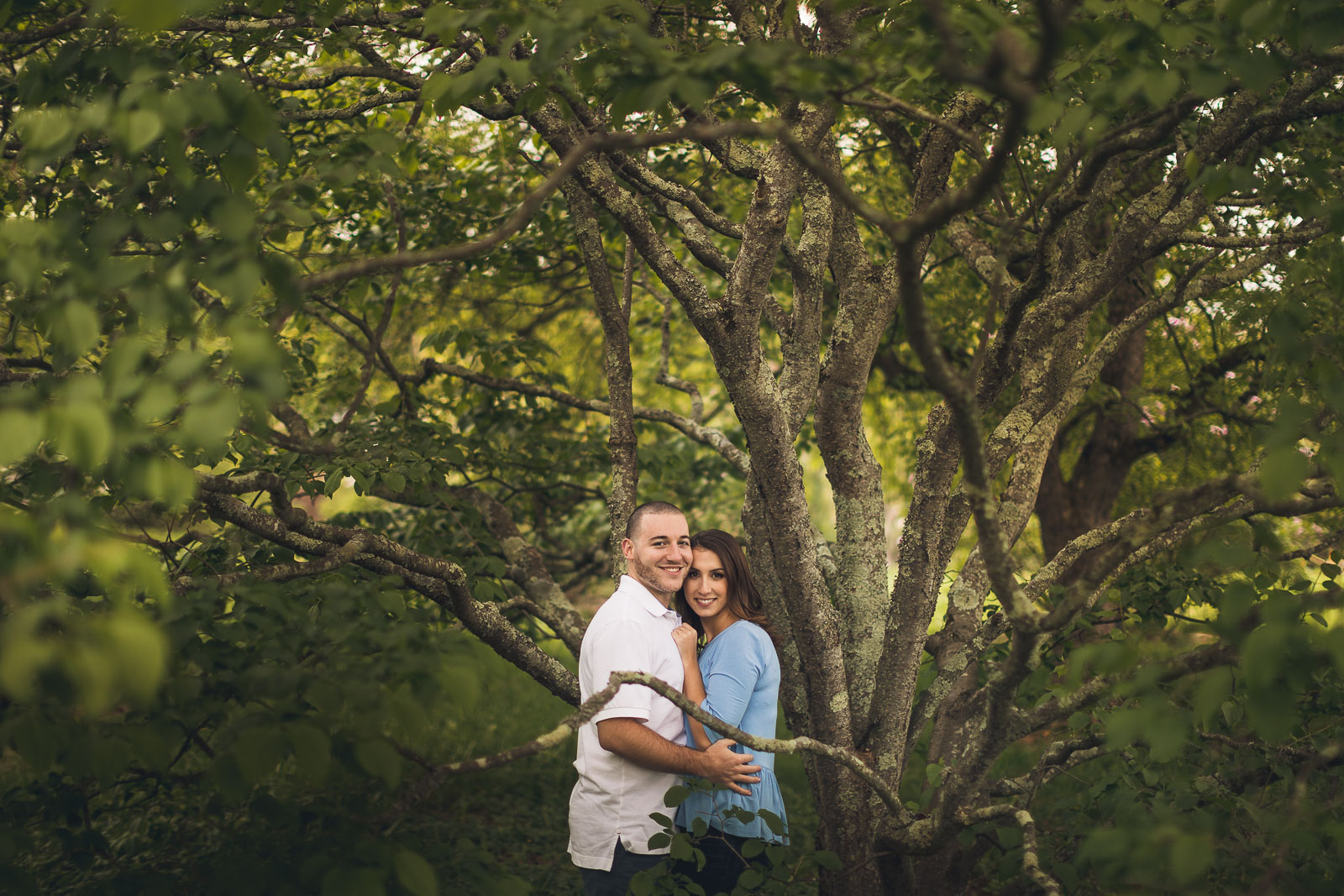 Willowwood Arboretum Portraits