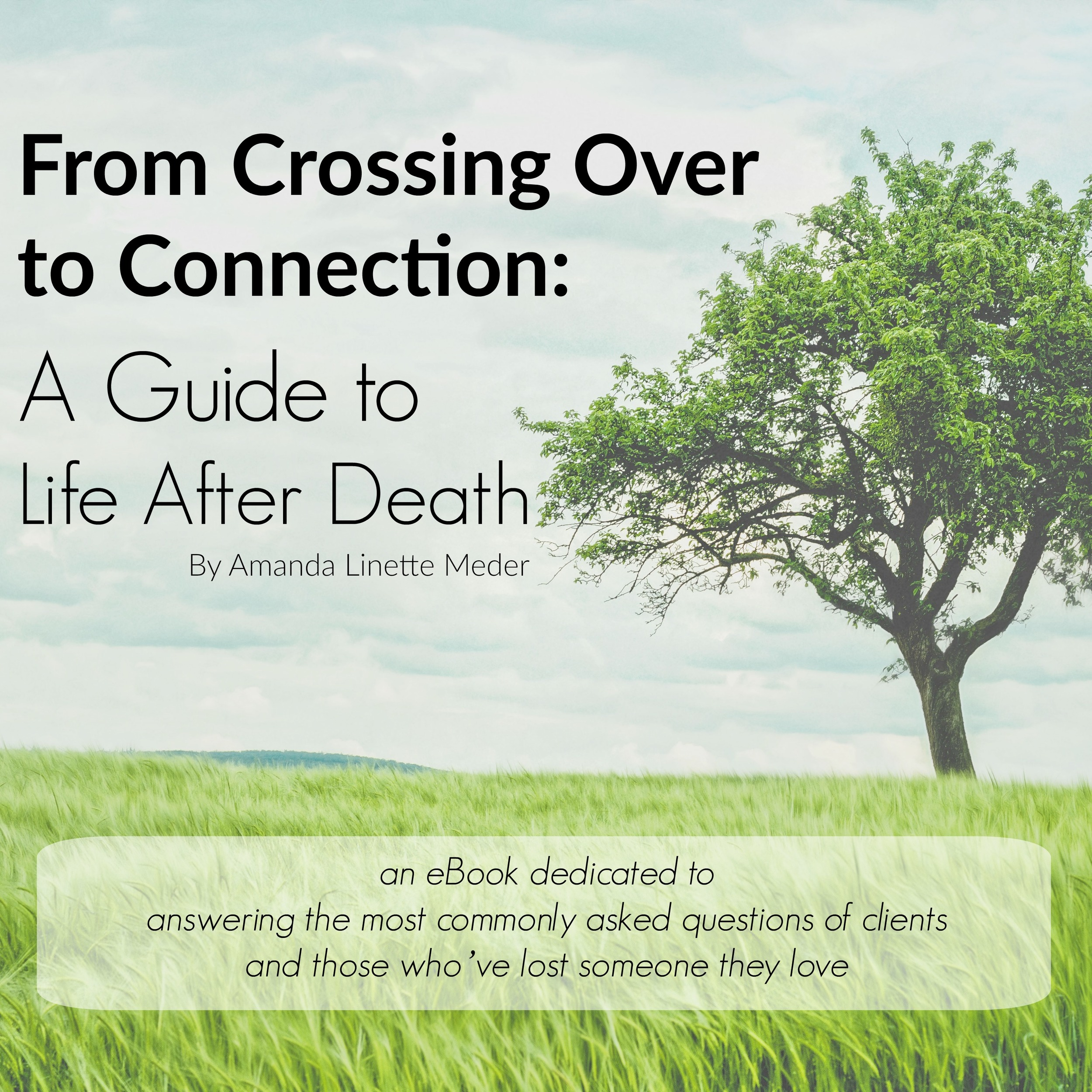 Connecting with the Spirit World . . .and your loved ones within it - doesn't have to be hard. In this informative eBook, Amanda answers 50+ of the most commonly asked questions of life after death - from suicide to spirit communication - just about everything you could ask is found within!