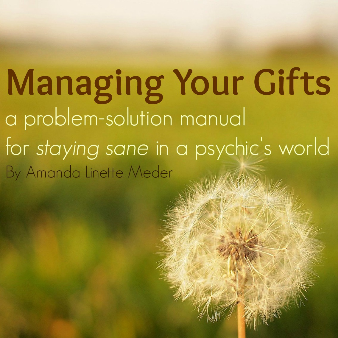 Managing Your Gifts eBook