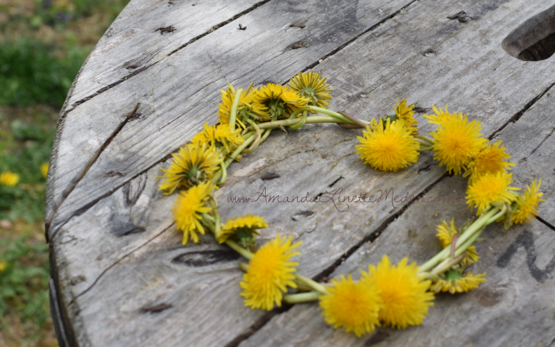 DIY Crafts: How to Make a Dandelion Flower Crown with Real Flowers - Read the article for the Step-by-Step ~   - Spring Crafts - Inner Child Work - Natural Flower Crowns
